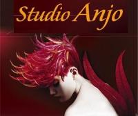 logo Studio ANJO - kadeřnictví Prostějov