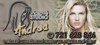 logo Vlasové studio ANDREA