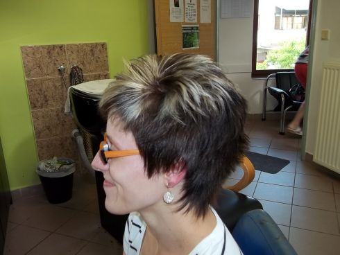 Krátké účesy pro krátké vlasy